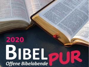 BIBEL PUR